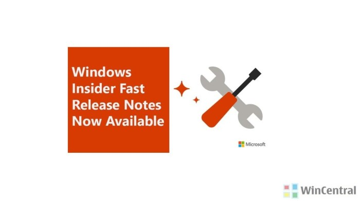 Windows Office Insider