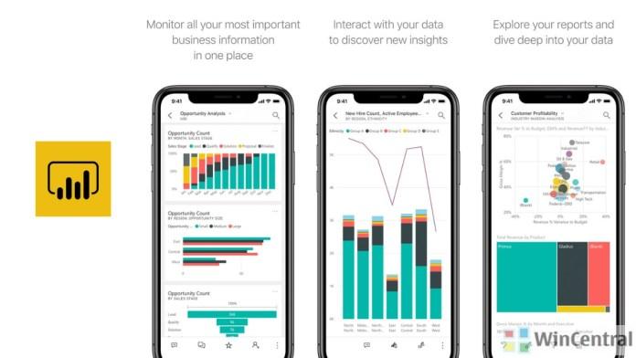 Power BI Mobile app
