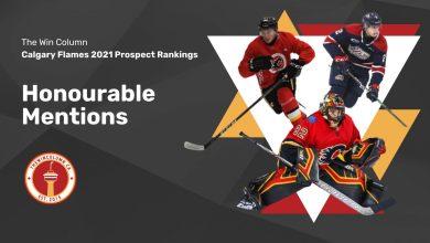 Calgary Flames 2021 Prospect Rankings Featured Image. Honourable Mentions. Tyler Parsons, Goaltender; Josh Nodler, Centre/Right Wing; Ilya Solovyov, Defenceman.