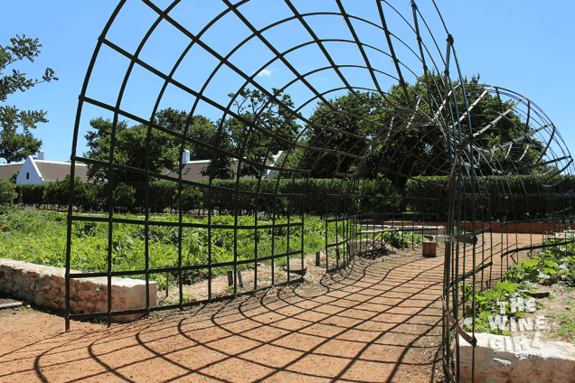 Babylonstoren-garden-feature