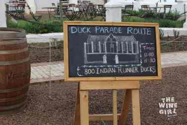 Vergenoegd-duck-parade-chalkboard