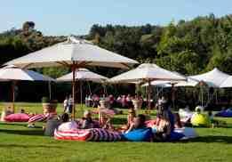 Peter Falke gardens