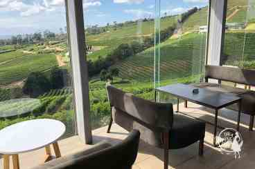 Beau Constantia inside tasting room with views