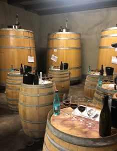 zandvliet wine blending