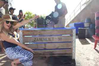 zandvliet wines wine girl harvest grapes