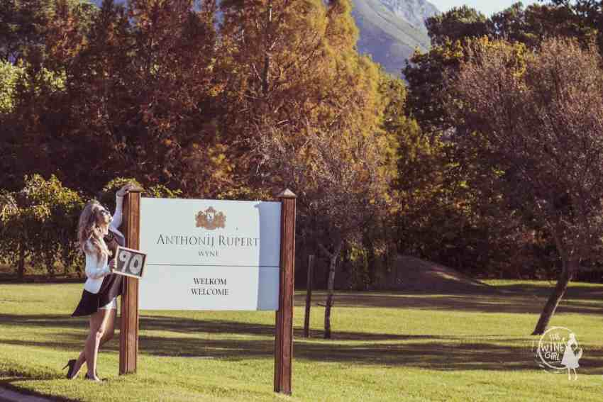 The Wine Girl Cape Town Anthonij Rupert Wyne