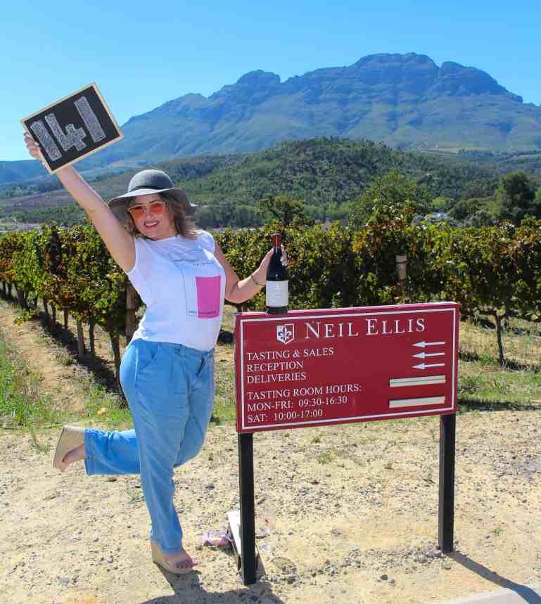 Neil Ellis Wines the wine girl cape town