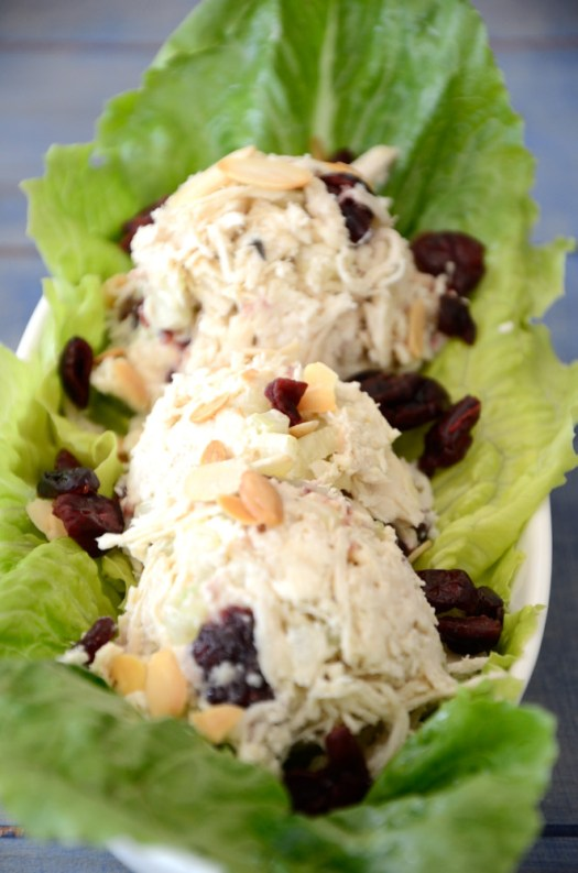 This Make Ahead Chicken Salad recipe makes the best chicken salad ever! This is the only one that I have been making of late!