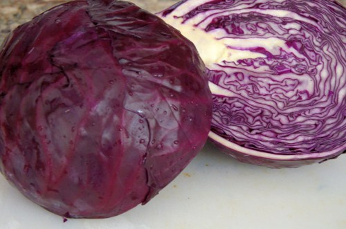 Head of red cabbage cut in half