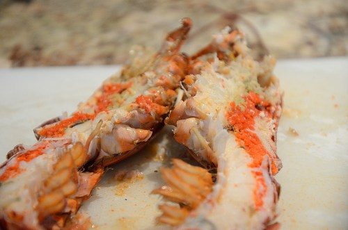 Lobster halved lengthwise