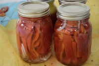 Pickled sweet peppers in pint jars with onion slices.