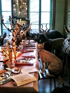 the bobcat who came to dinner