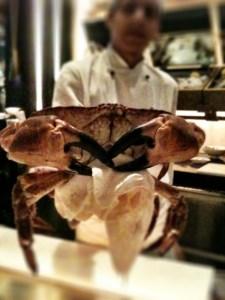 fresh, live crab