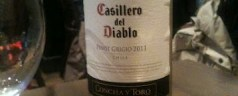 Casillero del Diablo pinot grigio and Korean food