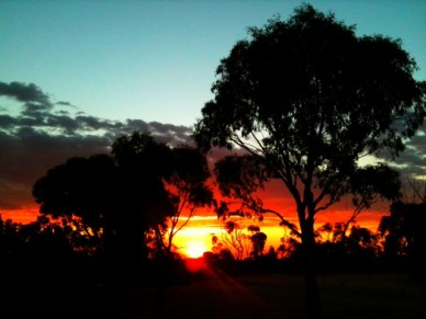 sunset in the Barossa