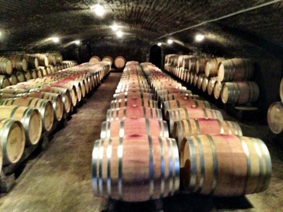 half empty barrel room, Domaine Parent Pommard