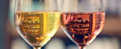 Featured Post: The Basics of Wine Tasting: How to Properly Taste Wine in Five Easy Steps