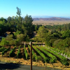 Wine making in the back country of San Diego, Eagles Nest Winery, Ramona AVA