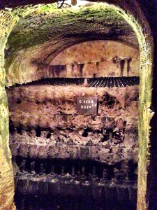 in the cellars