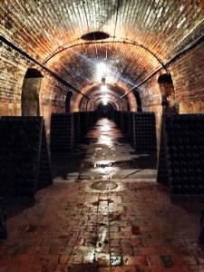 endless cellar
