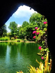 pond at Quinta de Curvos