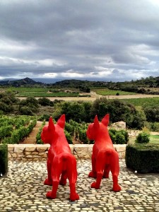 guard dogs overlooking Chateau Castigno