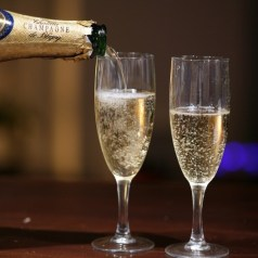 Champagne for Beginners