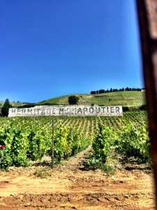 the Hermitage vineyards of Michel Chapoutier, Rhone Valley, France, wine