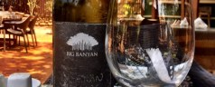 Postcard from India – Big Banyan Chenin Blanc