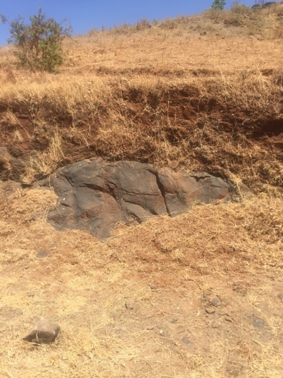 the terroir of Grover Zampa in the hills surrounding Nashik Valley, Maharashtra, India, Indian wine