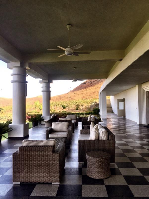 the veranda overlooking the vines at Chandon India, Nashik Valley, Maharashtra, Indian Wine