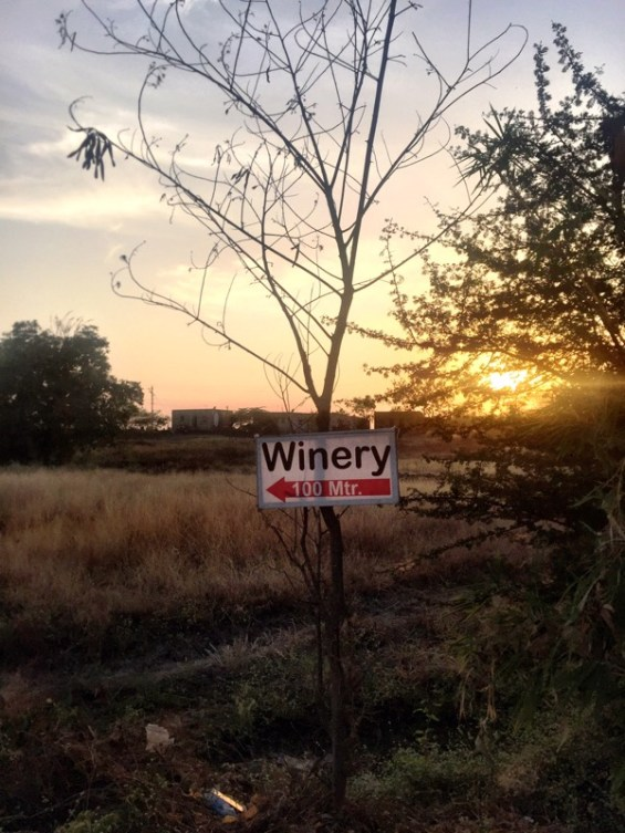 winery sign, Nipha Winery, Nashik Valley, India, Indian wine, Maharashtra