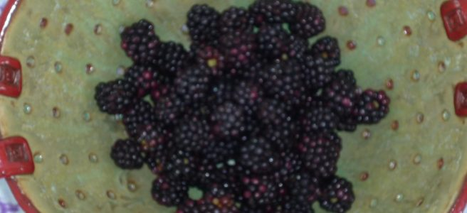 Blackberries in a pottery colander