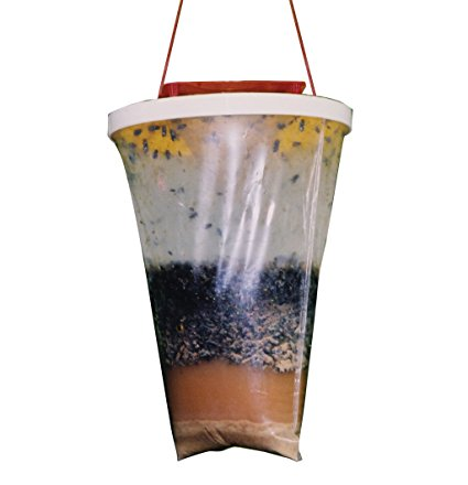 4. Flies Be Gone Fly Trap