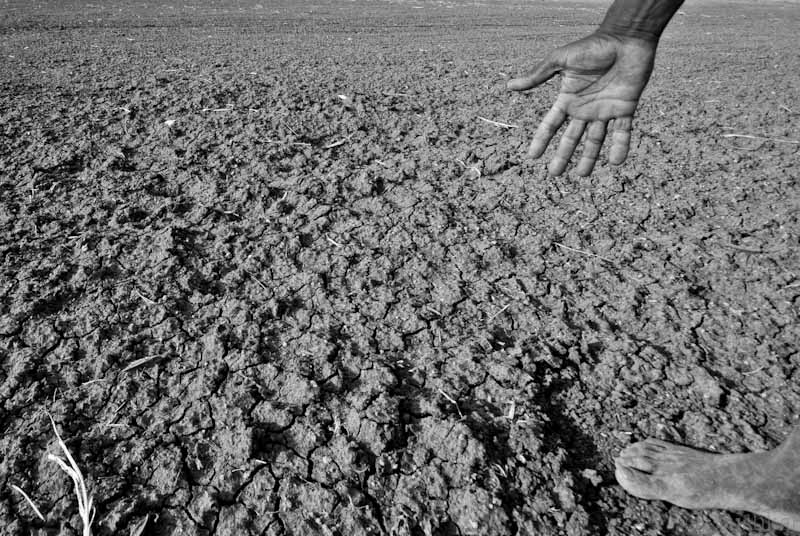 Drought conditions in parts of India in 2012. Photo: Pushkarv/Wikimedia Commons