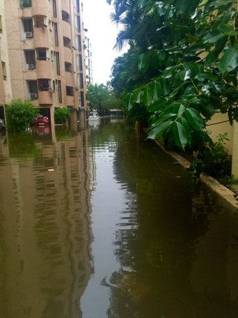 Water logged around an apartment complex in Velachery following two days of heavy rains in Chennai. Credit: Caarthick Raju