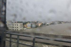 The Adyar river as seen from the Metro train. Credit: Sandhya Ravishankar