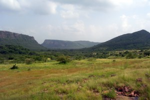 A view of Ranthambore National Park, Rajasthan. Credit: Wikimedia Commons