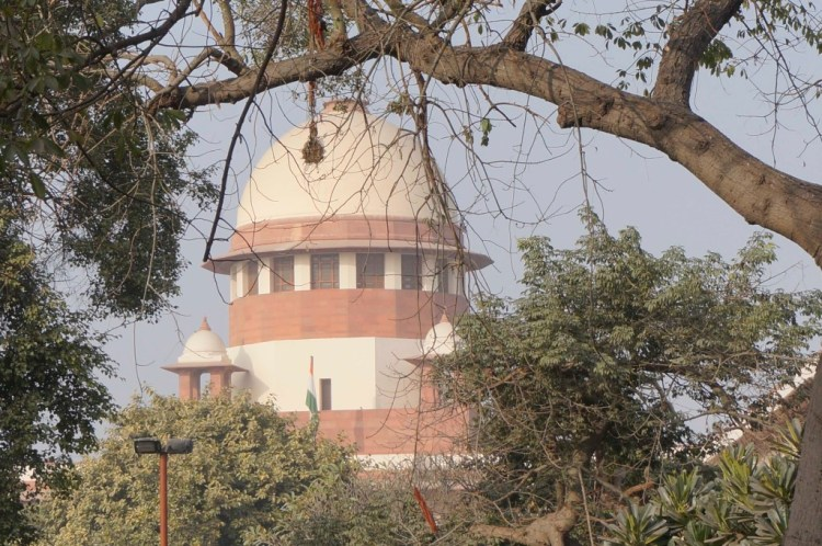 The trees may not be blooming but the language in the Supreme Court is flowery. Credit: Shome Basu