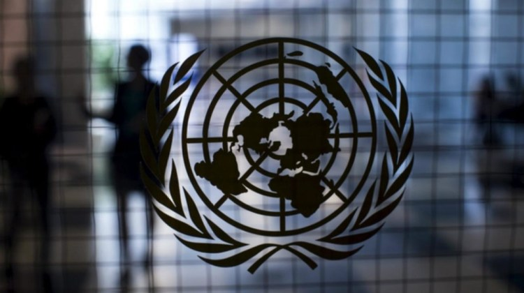 The UNGA Resolution established an Ad Hoc Committee on International Terrorism in 1972 consisting of 35 countries, including India. Credit: Reuters