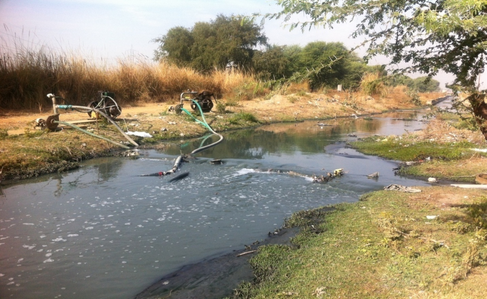 Engines pumping out polluted water from a feeder in Sanganer, Jaipur. Credit: Shruti Jain