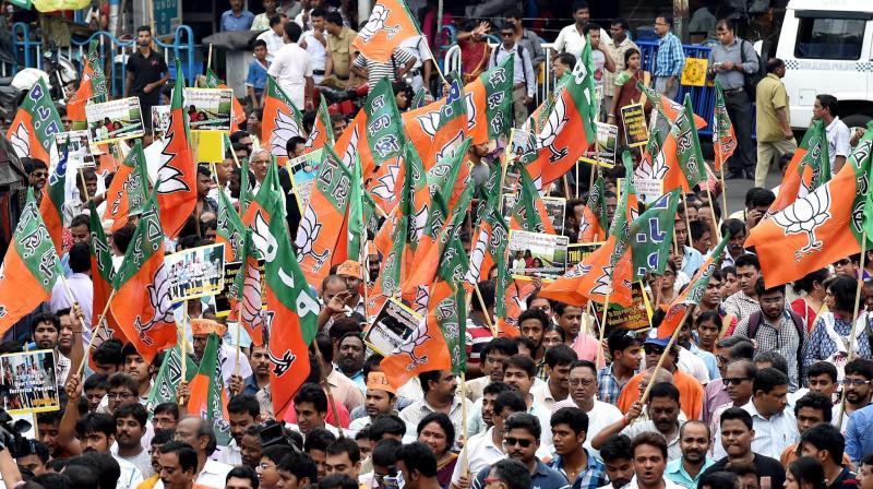 A BJP rally. Credit: PTI