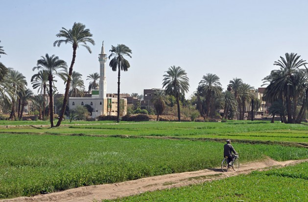 Egyptian countryside south of Luxor, Egypt. In the background: the village of Al Bayadiyah. Credit: Marc Ryckaert (MJJR)/Creative Commons.