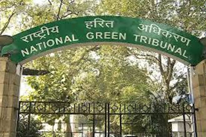 National Green Tribunal. Credit: PTI