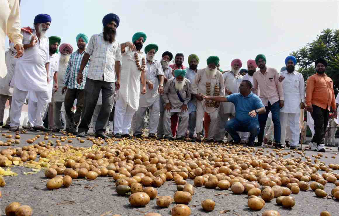Farmers dump potatoes on a road in Mohali on Tuesday during a protest demanding a remunerative price for their crop. Credit: PTI