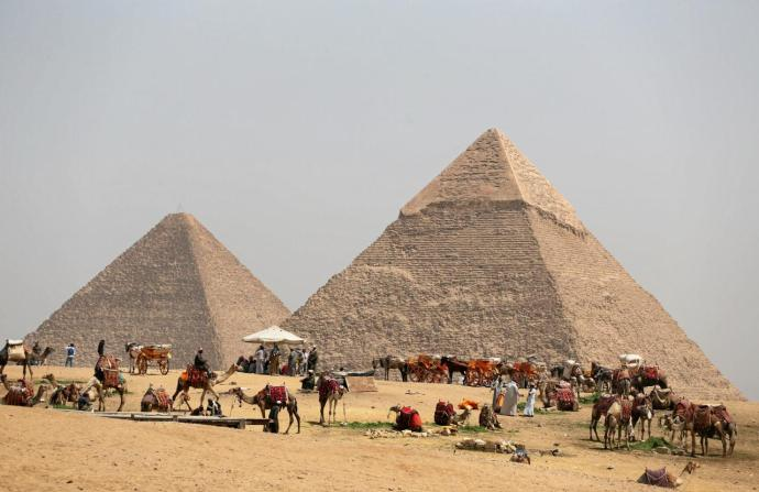 A group of camels and horses stand idle in front of the Great Pyramids awaiting tourists in Giza, Egypt. Credit: Reuters