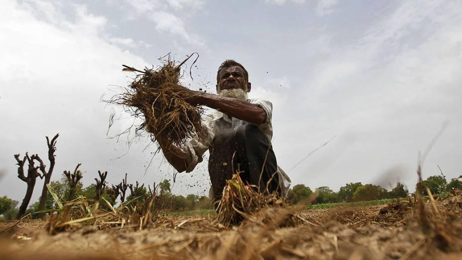 Farmers Reuters