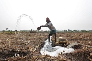 A farmer throws water after making a canal to irrigate his field in Kolkata, India, May 12, 2016. REUTERS/Rupak De Chowdhuri####################RUPAK DE CHOWDHURI