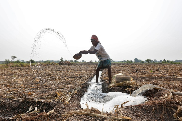 A farmer throws water after making a canal to irrigate his field in Kolkata, India, May 12, 2016. REUTERS/Rupak De Chowdhuri####################RUPAK DE CHOWDHURI