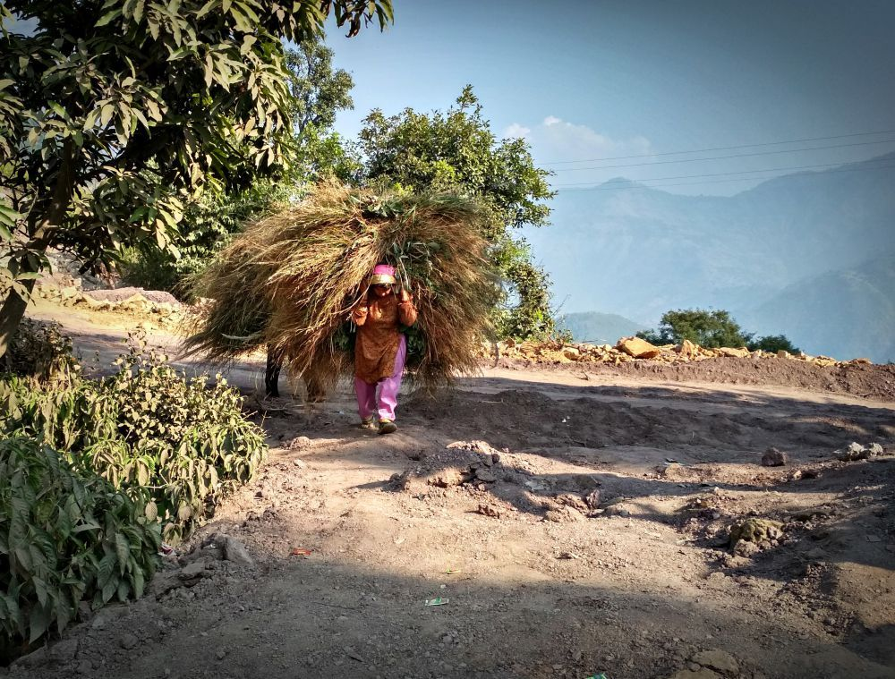 More than 50,000 families whose livelihoods and lives are based on agriculture and forests in the Mahakali river valley in India and Nepal will be impacted by the Pancheshwar Dam. Credit: Sumit Mahar